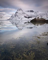 Finding reflections everywhere (Sunny Herzinger) Tags: norway lofoten fujixpro2 february winter reflection norge nordland no