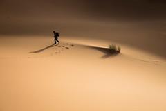 L'erg Chebbi (11) (mgirard011) Tags: randonnées ergchebbima maroc afrique lieux meknèstafilalet ma 400faves