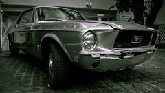 Mustang Ford (thomas.essi) Tags: usa maui hawaii lahaina blackwhite bw bn car ford mustang musclecar