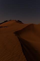 Dune sous la lune (gabs_z) Tags: morroco dune sand