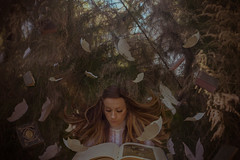 Story Time (Rebecca Rae Fine Art) Tags: book nature surreal surrealphotography fineart fineartphotography conceptualphotography fantasy butterflies fly white victoriandress vintage princess queen woods reading flying