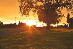 Morning Light (Gadgetman@Nikon) Tags: elements