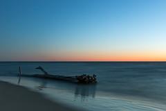 Sunset Drifter (matthewkaz) Tags: log tree driftwood roots lakemichigan lake water greatlakes sunset sky longexposure winter grandhaven beach reflection reflections michigan 2017 serpent seaserpent