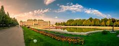 Schloss Belvedere III (Michele Naro) Tags: belvedere belvederepalace schlossbelvedere wien visitvienna vienna austria oesterreich niederoesterreich bassaaustria loweraustria nikond80 samyang14mmf28