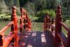Parc Oriental de Maulévrier, France (Tiphaine Rolland) Tags: parc park parcorientaldemaulévrier maulévrier japonais japanese japanesegarden jardinjaponais jardin garden france にわ 庭 green vert 緑 water eau みず 水 red rouge 赤い あかい pont bridge