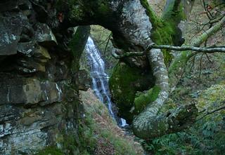 El Pozo tras del haya en la roca.