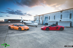 Speed Shield Lambo's (Mike M. Photos) Tags: speedshield mikemphotos lamborghini lambo aventador huracan dallas clearbra wrap sony a7rii sonya7rii racecar exotic supercar