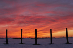 My first icelandic Sunset. Tonight. (amanecer334) Tags: iceland icelandic scandinavia north europe sunset sun sky red colors contrast snow winter now today landscape amazing beautiful magic nature islandia