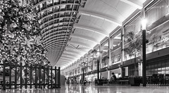 Last Christmas (leadin2) Tags: x g5 g5x powershot canon 2016 singapore city tourism marina bay sands black white mall building christmas mbs