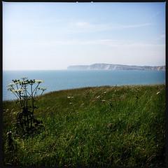 2014-06-22-0121.jpg (Fotorob) Tags: water engeland kust planten isleofwight england freshwater