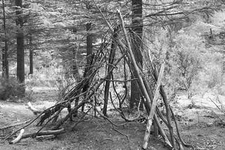 Refugio  - Shelter