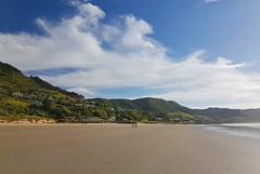 Ahipara (terri-t) Tags: ahipara 90milebeach northland beach cost sea sand clouds landscape nature walk nz newzealand aotearoa green sunny