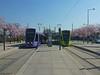 Alstom Citadis 302 n°104 / n°108