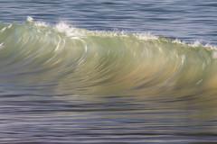 Wave Art #303 (haddartist) Tags: waveart series artsy artistic ocean oceanside oceanfront coast coastal surf wave swell break shorebreak breaking lip tube barrel clean glassy reflection line ripples afternoon light color colorful blur slowshutter speedblur longexposure virginiabeach virginia