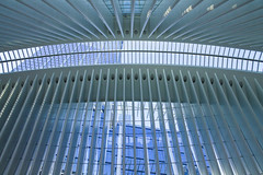 Oculus Spine (BFrue) Tags: windows modern nyc oculus world trade center new york city 911 path station hub transportation lower manhattan mall subway