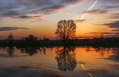 Unten am Fluss 3 (in explore) (tan.ja1212) Tags: sonnenuntergang sunset wolken clouds himmel sky wasser water river fluss spiegelung reflection schatten shadow abend evening