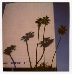 LAPD Palms (tobysx70) Tags: the impossible project tip polaroid sx70sonar sonar instant color film for sx70 type cameras impossaroid lapd palms parker center los angeles street dtla downtown california ca palm tree shadows police department headquarters sign highrise skyscraper blue sky toby hancock photography