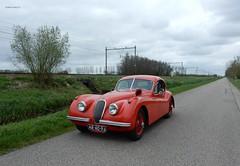 Jaguar Xk 120 Fhc 1952 (bcbvisser13) Tags: fhc 120 xk jaguar jaguarcars coupe sportauto sportscar productieauto ar4096 1952 nederland eu