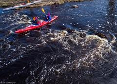 Kajakk veel 1 (BlizzardFoto) Tags: türitorikiirlaskumine the8thtüritoridownriverrace türitori kiirlaskumine downriverrace kanuu canoe kajakk kayak river jõgi võistlus race kevad spring vesi water droonifoto dronephotography aerofoto aerialphotography