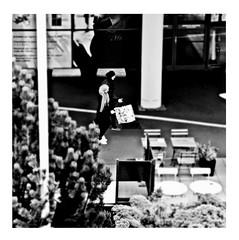 let's see action (japanese forms) Tags: ©japaneseforms2017 ボケ ボケ味 モノクロ 日本フォーム 黒と白 action bw blackwhite blackandwhite blancoynegro bokeh candid hijab letsseeaction monochrome random schwarzweis square squareformat strasenfotografie straatfotografie streetphotography thewho vlaanderen zwartwit pun wortspiel woordspelling
