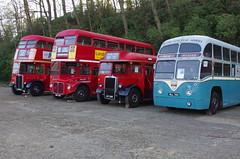 IMGP9075 (Steve Guess) Tags: cobham lbpt brooklands weybridge byfleet surrey england gb uk museum bus mll740 4rf4 aec regal bea airport coach td95 leyland tiger rml2760 rt2775