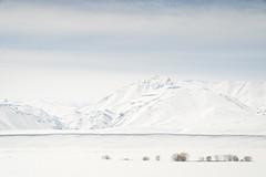 Winter Wonderland (Pichaya V. (Zolashine)) Tags: a7s frozen kyrgyzstan leica leicam pichayaviwatrujirapong simplicity sony sonya7s suusamyr suusamyrvalley travel winterwonderland zolashine minimalism chuyprovince kg