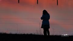 Silhouet (Moor Fotografie) Tags: biesbosch avond water zonsondergang rood silhouet
