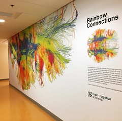 My brain mural is up at #MIT Finally get to see it in person today. (inkdesigner) Tags: mit