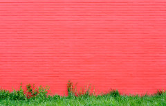 Red Wall (XoMEoX) Tags: red rot wall wand green grün grass gras contrast color farben farbkontrast colorcontrast colours colors d5200 nikon minimnal minimal minimalistic minimalistisch pflanzen crimson mauer bewuchs plants gewächse