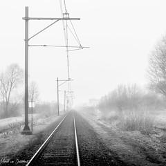 Tracks (M van Oosterhout) Tags: train railway classic national railways track holland netherlands nederlandse spoorwegen ns alphen aan den rijn