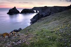 Let it slide (pauldunn52) Tags: kynance cove sunset cornwall turf sea flowers