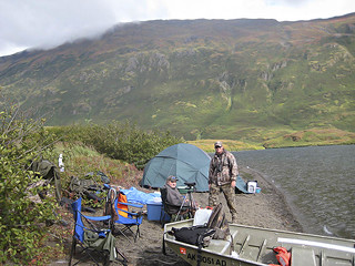 Alaska Moose and Bear Hunt - Dillingham 36