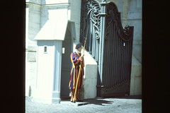 Swiss Guards at the Vatican (TureBlådåre) Tags: swiss guard vatican film analog italy rome roma