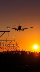 Boeing 737 Landing - Phone Wallpaper (gc232) Tags: phone wallpaper 1080p 1920 1080 1080x1920 1920x1080 landing boeing 737 airplane plane spotting avgeek aviation pilot sunset sunrise approach ramp