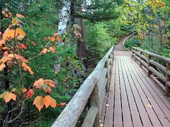 Cascade River State Park trail