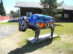 Yellowstone National Park, Wyoming (MJR96) Tags: usa art buffalo yellowstonenationalpark yellowstone wyoming bison yellowstonenp westyellowstone