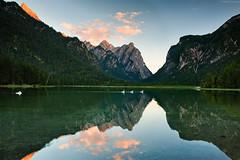 Lago di Dobbiaco/Toblacher see (Corsaro078) Tags: sunset mountain lake reflection water landscape lago nikon tramonto riflessi paesaggio dolomites d3 swann cigni dobbiaco olomiti toblachersee lagodidobbiaco