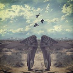 parallel creatures (elle.hanley) Tags: sky woman sun birds veil desert twin texturebylesbrumes vivadeva ladymisselle brookeshadenlindsayadlerworkshop