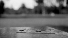 lonely puzzle (leicaflex sl, 50mm summicron) (PositiveAboutNegatives) Tags: park leica blackandwhite bw slr film analog vintage 50mm florida sl summicron coolscan 11215 leicaflex version2 leitz lakeworth fomapan foma100 aristaeduultra 50mmsummicron colorneg vuescan leicar leicaflexsl nikon9000scanner blackandwhitefilmphotography spillwaypark leicafilmphotography freefilmimages freefilmpictures