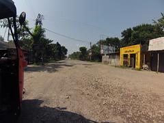 ספטמבר 9 - 13·54 - Rickshawrun4 477