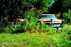 55 x 2 (David Sebben) Tags: abandoned 1955 yard sedan junk rust deluxe union iowa mount windsor chrysler fourdoor