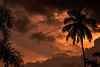 Thou can't hide the power (pixotik) Tags: sunset sky orange sun india color tree clouds landscape coconut bangalore rays karnataka freedompark challengeyouwinner