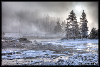 Yellowstone in Winter 8093-6