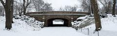 Dalehead Arch (dansshots) Tags: park nyc newyorkcity bridge panorama snow ny newyork centralpark central d3 centralparknyc centralparkbridge snowinnewyork snowinnyc nikond3 stictchedpanorama dansshots