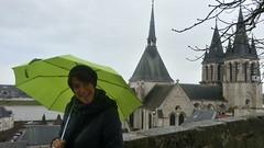 un po' di Verde a Blois
