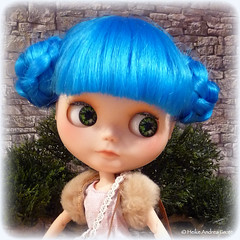 Darling Bluebelle