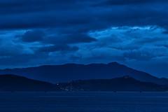 Mt. Tamalpais, Clearing Storm (MYSPhotography) Tags: mttamalpais clearingstorm distagont235 sfbaytrail
