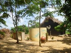 "africa 2013 445 <a style=""margin-left:10px; font-size:0.8em;"" href=""http://www.flickr.com/photos/104703188@N06/13064483465/"" target=""_blank"">@flickr</a>"