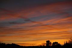 Sunset 3 21 14 #13 (Az Skies Photography) Tags: sunset red arizona sky orange cloud sun black rio yellow skyline clouds canon skyscape eos rebel gold golden march twilight 21 dusk salmon az rico nightfall 2014 rebe arizonasky arizonasunset riorico 32114 rioricoaz t2i arizonaskyline canoneosrebelt2i eosrebelt2i arizonaskyscape march212014 3212014