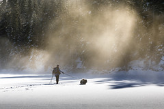 (Svein Nordrum) Tags: winter wintertime snow light dog wilderness woods outdoors xcskiing 5dmkiv